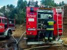 Pożar w zakładzie drzewny. Paliły się trociny w Wierzchowie