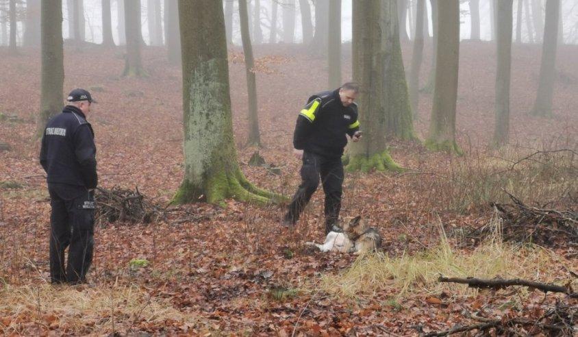 Ranny pies znaleziony w lesie. Pilnujcie swoich podopiecznych