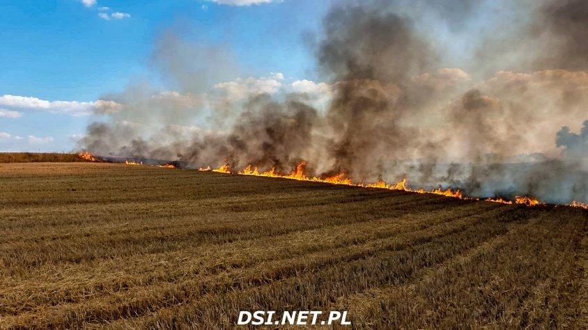 Tak wyglądał pożar w Kosobudkach