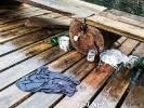 Pierwsze patrole Społecznej Straży Rybackiej w nowym roku. Jest zapowiedz walki ze śmieceniem
