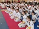 Wojewódzka Olimpiada Karate