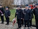 Uroczystości rocznicowe w Ostrowicach