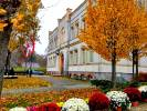 4,5 tysiąca chryzantem ozdobiło teren gminy Węgorzyno.