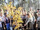 Harcerze z Pomierzyna w akcji sadzenia Dębu Wolności na 100-lecie Niepodległości