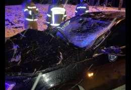 Na samochód, którym jechali podróżni spadło drzewo