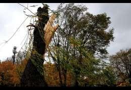 Szkody wyrządzone przez wiatr. Zdjęcia. Aktualizujemy na bieżąco
