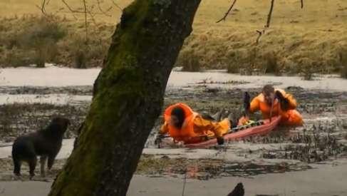 Strażacy uratowali psa z lodu. Zobacz nagranie