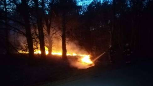 Palił się las w okolicach Broczyna