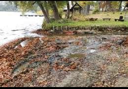 Naukowiec alarmuje. Ktoś naruszył poziom wód między jeziorami, a Drawa nie płynie