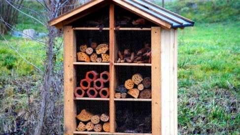 Zbuduj domek dla owadów – ciekawy konkurs w Czaplinku