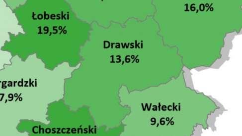 Bezrobocie u nas na tle innych gmin i powiatów zachodniopomorskiego
