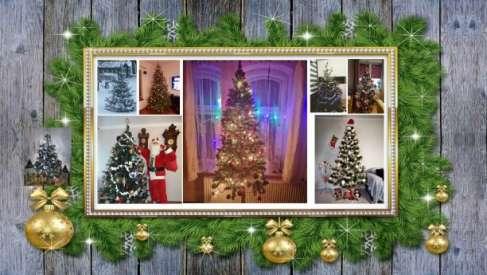 Zobacz: Galeria Waszych pięknych choinek bożonarodzeniowych