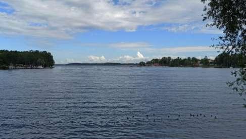 Na ratunek jeziorom lobeliowym – zwycięstwo w ekologicznym konkursie drużyny z Czaplinka