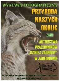 2020-11-11 Wystawa fotograficzna - przyroda naszych okolic