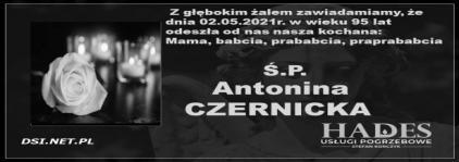 Ś.P. Antonina Czernicka