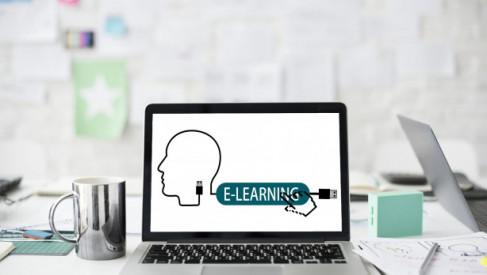 Szkolenia biznesowe – jak wygląda oferta szkoleń dla biznesu?
