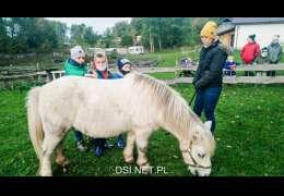 Grabili siano, karmili konie – aktywne spotkanie w stajni w Zarańsku